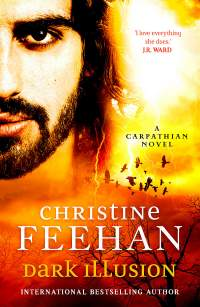 Dark Illusion || Christine Feehan || No. 4